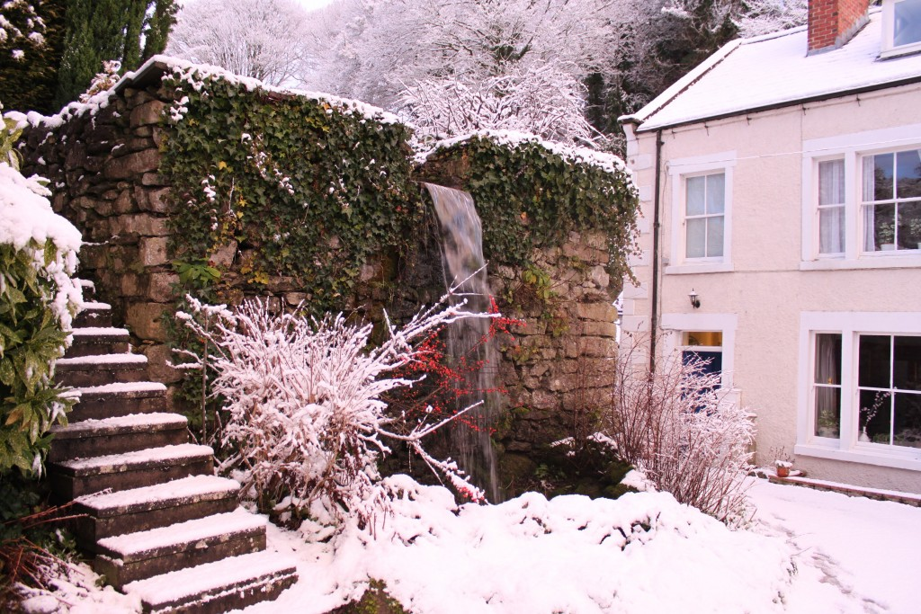 Snow in January at Cascades House and Gardens