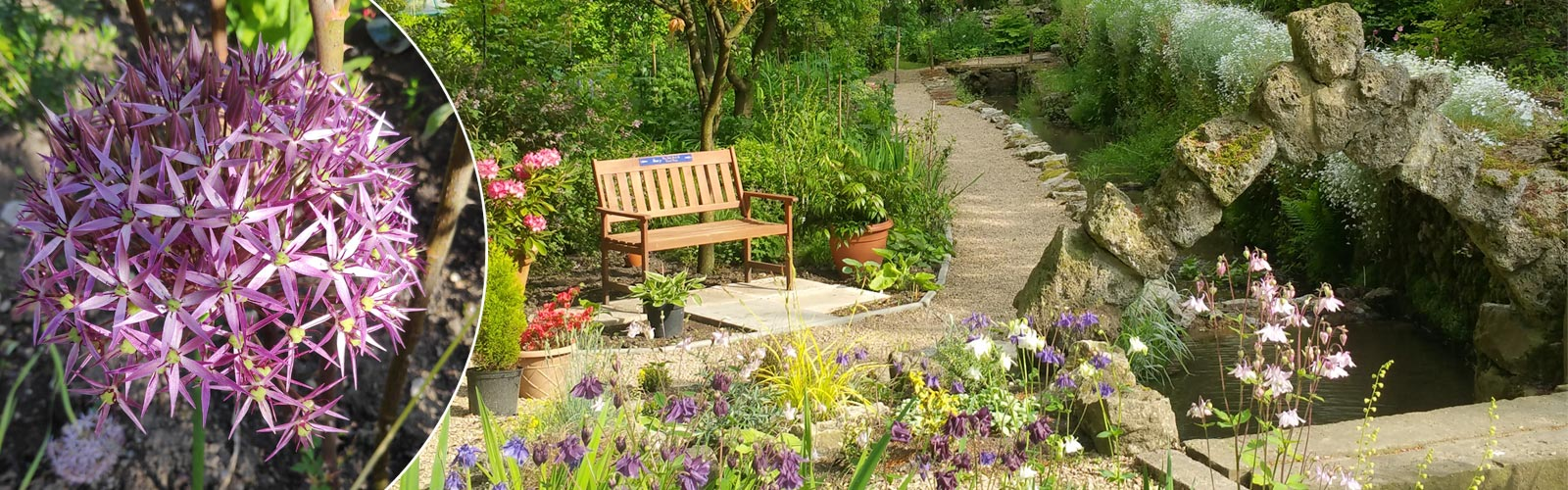 derbyshire garden for wellbeing and health