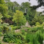 garden views - Garden for Wellbeing, Derbyshire